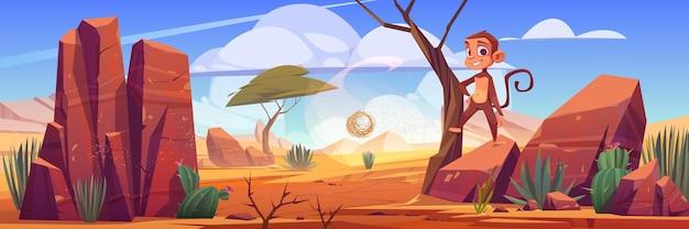 Paesaggio desertico con rocce cactus e scimmia