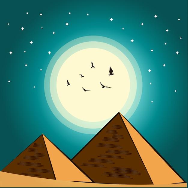 Desert night sky vector