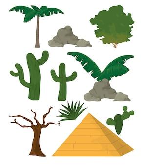 砂漠の植物と要素