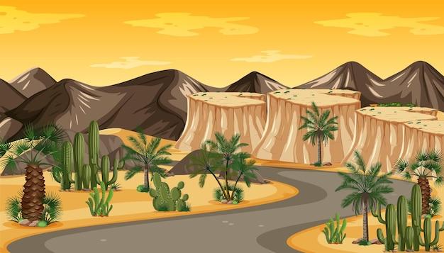 Desert road beautiful golden evening light at sunset