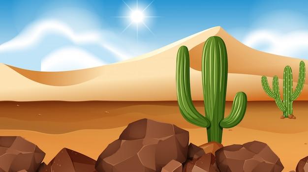 Сцена пустыни с кактусом
