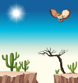 Desert scene with owl flying over canyon