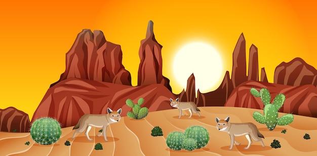 夕日のシーンで岩山とコヨーテの風景と砂漠