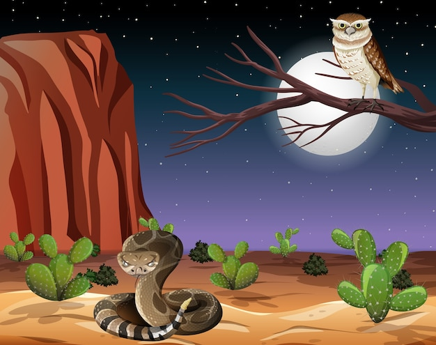 Desert with rock mountains and desert animals landscape at night scene