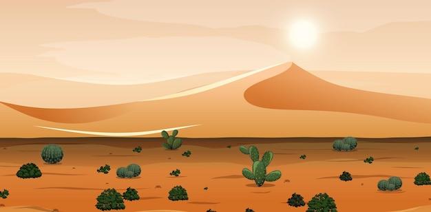 낮 시간 현장에서 모래 산과 선인장 풍경 사막
