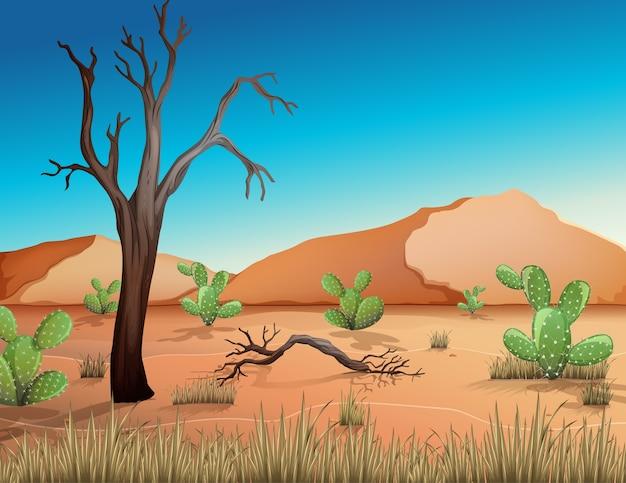 Deserto con montagne di sabbia e paesaggio di cactus alla scena del giorno