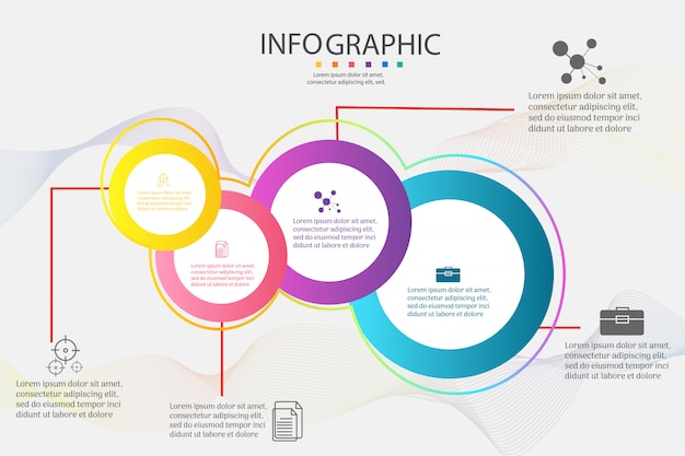 Design business template 4 options infographic chart element.