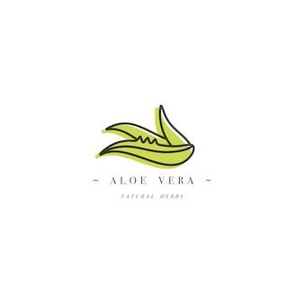 Дизайн шаблона логотипа и эмблемы здоровой травы - алоэ вера. логотип в модном линейном стиле изолированы.