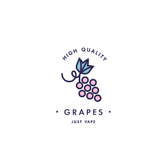 Design template logo and emblem - taste and liquid for vape - grapes. logo in trendy linear style.
