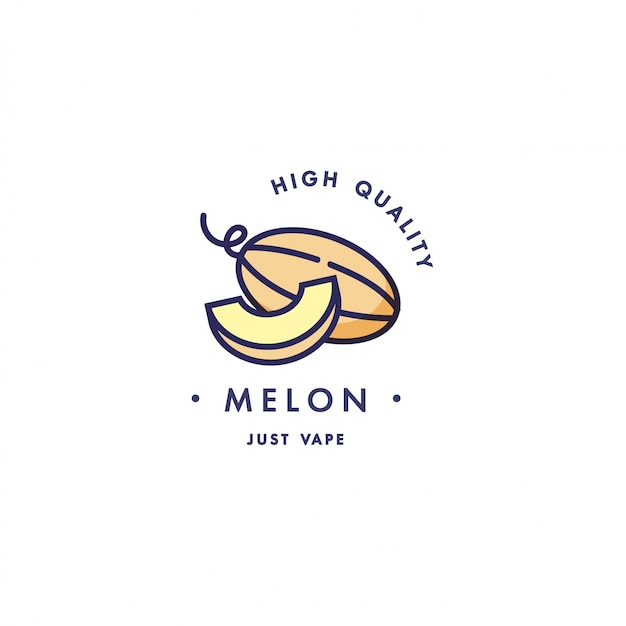 Design template logo and emblem - taste and liquid for vape - melon. logo in trendy linear style.