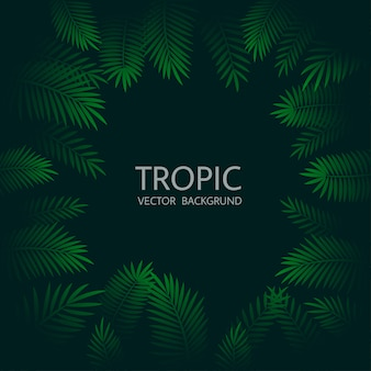 Design with exotic tropical palm leaves and lettering.