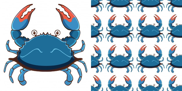 Design with seamless pattern blue crab