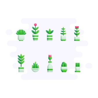 Desktop plants in flat style