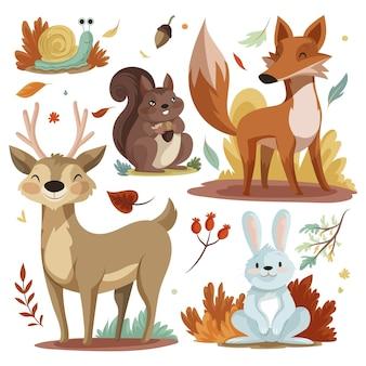 자세한 가을 동물 컬렉션