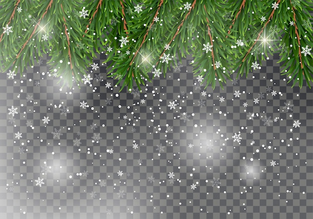 Detailed christmas fir tree branches with falling snow as a christmas decoration