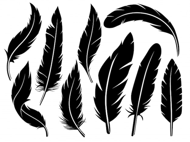 feather vectors photos and psd files free download rh freepik com feather vector illustration feather vector design