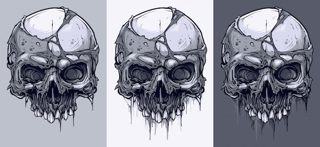 Detailed graphic black and white human skulls set