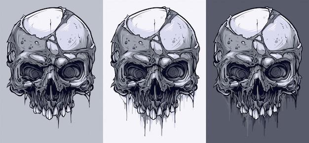 Detailed graphic black and white human skulls set