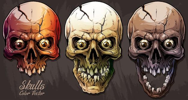Detailed graphic colorful human skulls set