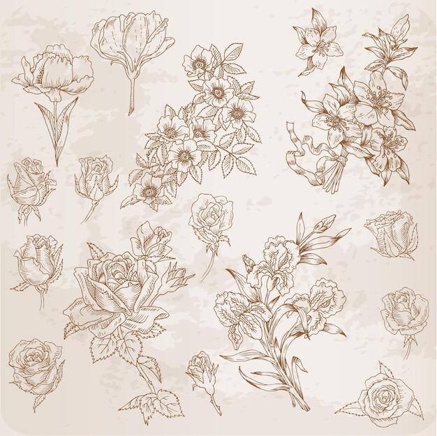 Подробно нарисованные от руки цветы - для альбома для вырезок и дизайна