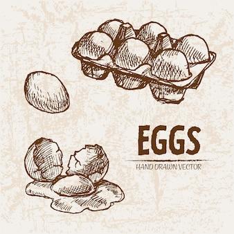 자세한 라인 아트 계란 컬렉션