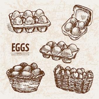 세부 라인 아트 분할 및 포장 계란