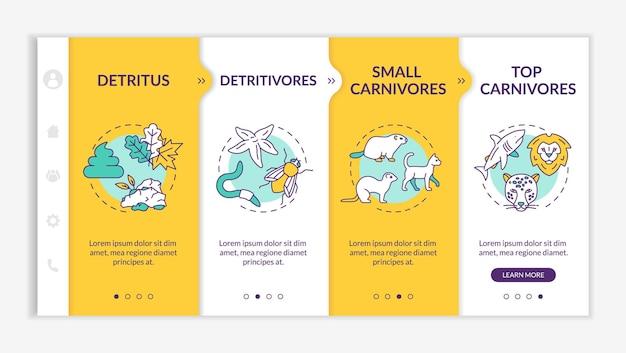 Шаблон вектора адаптации пищевой цепи detritus. биологический процесс. детритофаги и плотоядные животные. адаптивный мобильный сайт с иконками. экраны пошагового просмотра веб-страниц. цветовая концепция rgb