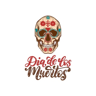 Dia de los muertos translated from spanish day of the dead handwritten phrase. vector illustration of skull in engraved style on white background. design concept for party invitation, greeting card.