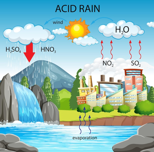 酸性雨の経路を示す図 無料ベクター