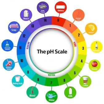 Диаграмма, показывающая масштаб ph
