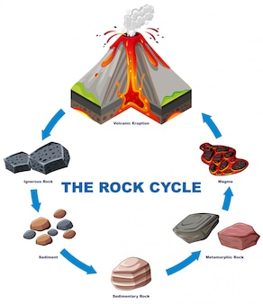 Diagramma che mostra il ciclo di roccia Vettore gratuito