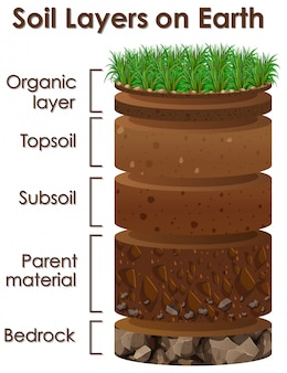 Diagram showing soil layers on earth
