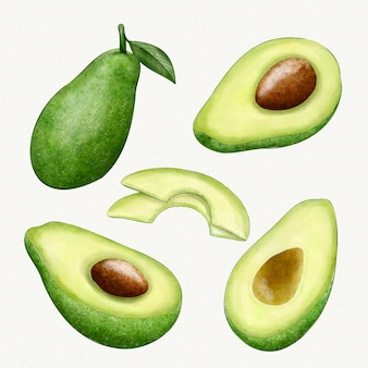 Different angles of avocado fruit