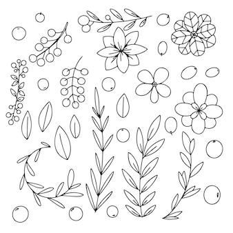 Различные ветви, листья и цветы на белом фоне. каракули, эскиз трав.