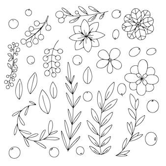Different branches, leaves and flowers on a white background. doodle, sketch of herbs.
