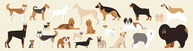 さまざまな品種の犬が設定されています。明るい背景に孤立した犬。フラット漫画。図。コレクション