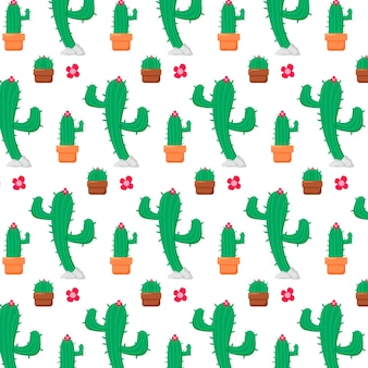Different cactus plants pattern