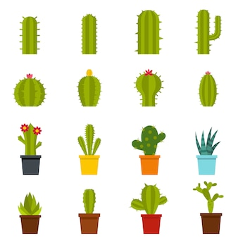 Different cactuses icons set in flat style