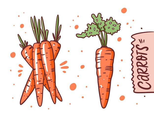 Разная морковь. рука рисовать векторные иллюстрации. мультяшный стиль. изолированные на белом фоне.