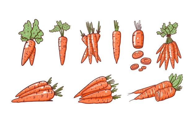 Набор различных моркови. плоские векторные иллюстрации. мультяшный стиль. изолированные на белом фоне.