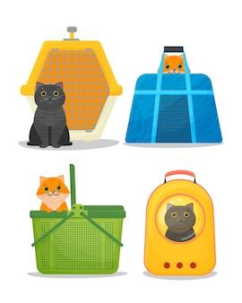 Разные кошки в переноске в пластиковой клетке-переноске