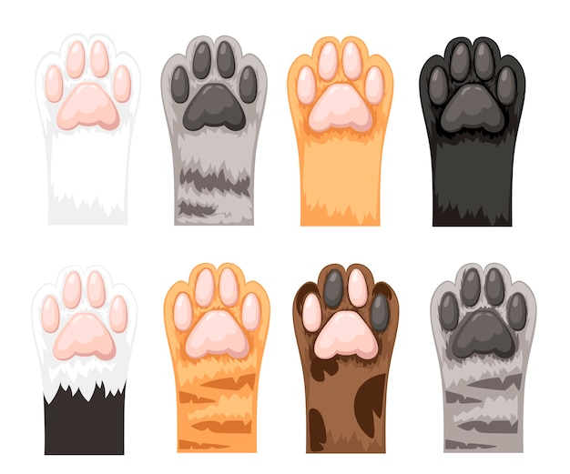 Different color cat paws icon collection.