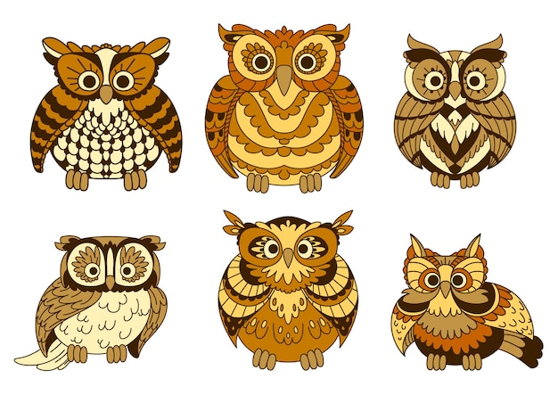 Different decorative cute brown cartoon owls birds with funny plumage facing the viewer.