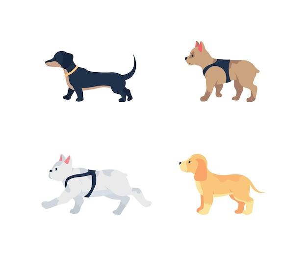 Плоский цветной подробный набор символов разных пород собак