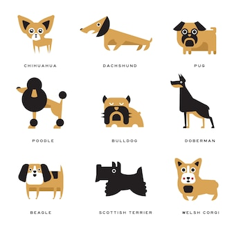 Different dogs breeds characters set of  illustrations and lettering breed in english