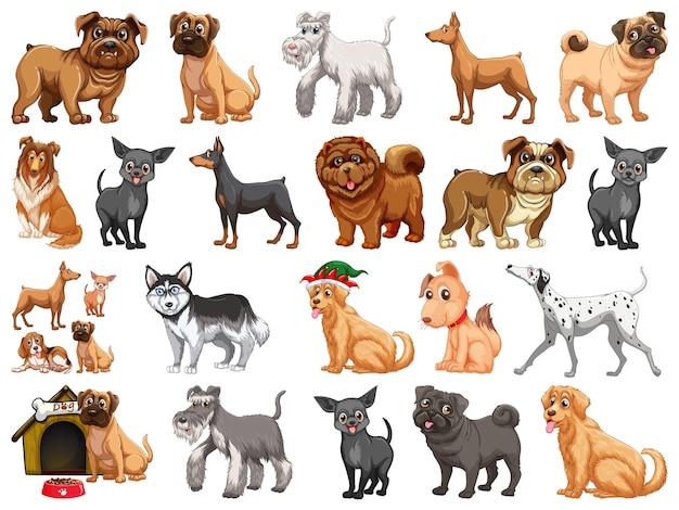 Различные смешные собаки в мультяшном стиле, изолированные на белом фоне