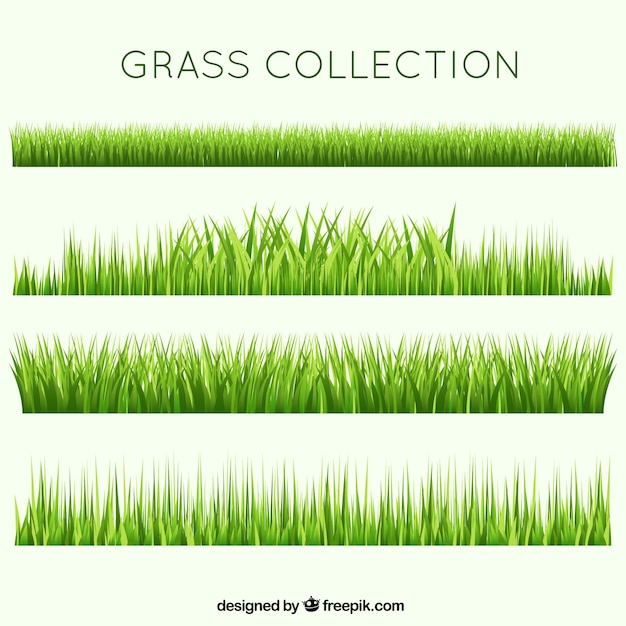 grass vectors photos and psd files free download rh freepik com vector grasshopper vector grass free