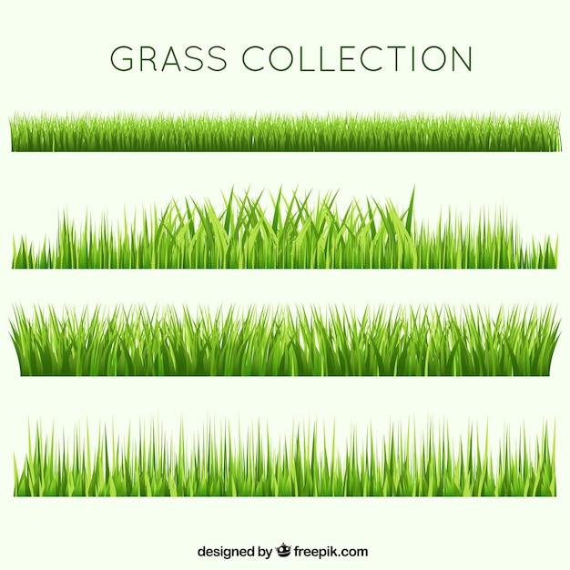 grass vectors photos and psd files free download rh freepik com free vector grass silhouette free vector glasses