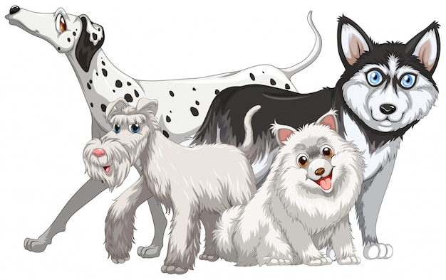 Different kind of cute dogs illustration