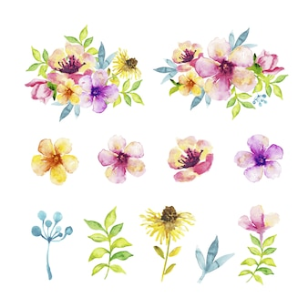 Different kind of flowers and leaves in watercolor effect